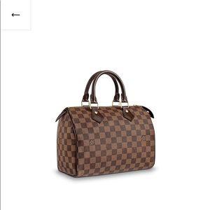 Louis Vuitton Speedy 25 small tote
